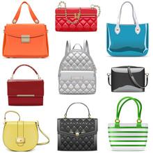 Vector Fashion Female Handbags