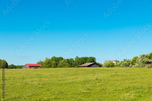 Foto op Plexiglas Blauw Country summer landscape.