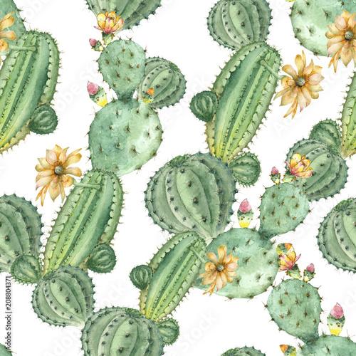 zielone-kaktusy-i-sukulenety-na-bialym-tle-akwarela