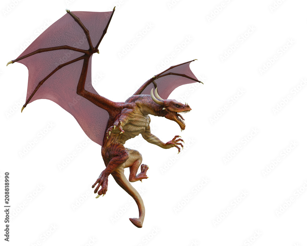 red dragon in a white background