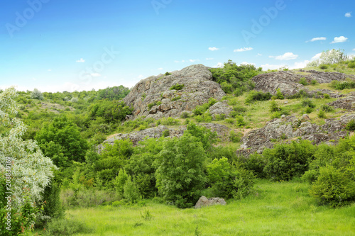 Tuinposter Pool Picturesque landscape with rocky hill and green plants. Camping season