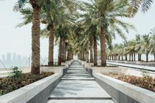 Exploring Doha