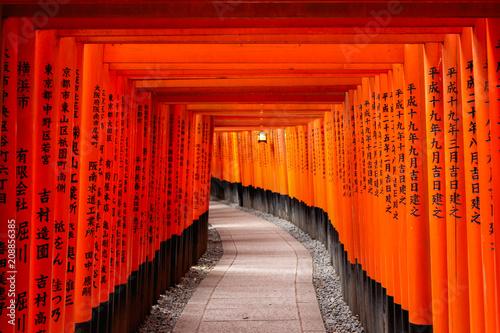Poster Tokyo Fushimi Inari Taisha Shrine