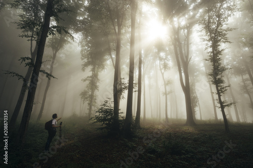 Man in awe in enchanted forest with fog with sun rays