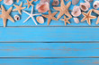 Tropical beach summer starfish background border