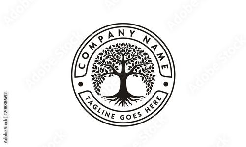 Family Tree of Life Stamp Seal Emblem Oak Banyan logo design vector