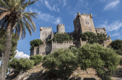 Photo  Castle of Almodovar del Rio, It is a fortitude of Moslem origin, a Stage of the