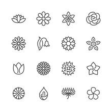 Flowers Flat Line Icons. Beaut...