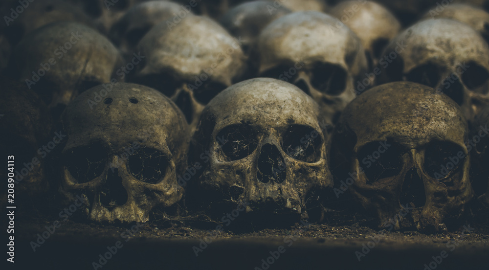 Fototapeta Collection of skulls covered with spider web and dust in the catacombs. Rows of creepy skulls in the dark. Abstract concept symbolizing death, terror, and evil.