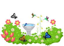 Butterfly Hummingbird Garden B...