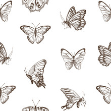 Collection Of Hand Drawn Brown Silhouette Butterflies. Vector Illustration In Vintage Style. High Detailed Hand Drawn Illustration. Spring Theme Of Butterfly. Vector Design