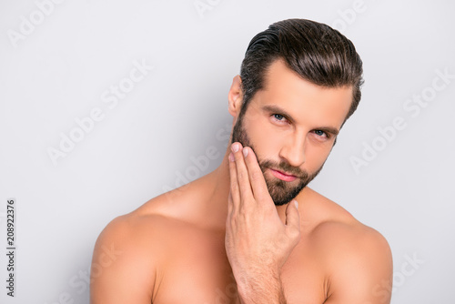 Obraz Attractive, brutal, modern, manly, virile, confident, dreamy, naked man touching his perfect, ideal face skin, holding hand on beard, cheek, looking at camera, isolated over gray background - fototapety do salonu