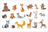 Fototapeta Fototapety na ścianę do pokoju dziecięcego - Forest Animals Set