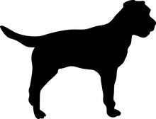 Border Terrier Silhouette Black