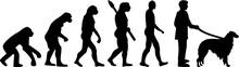 Borzoi Evolution