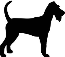Irish Terrier Silhouette Black