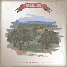 Farmhouse And Orchard Color Vector Sketch.