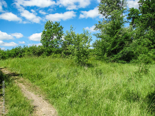 Spoed Foto op Canvas Natuur nature sunny summer day with blue sky and white clouds