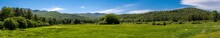 Panoramic View Of A Glade With...