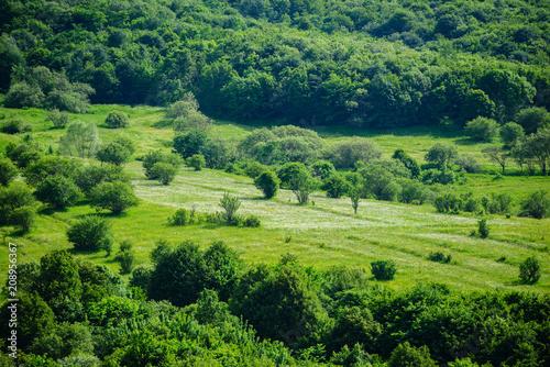 Foto op Canvas Pistache Marvelous landscape with forest, Armenia
