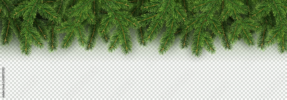 Fototapety, obrazy: Christmas, New Year, Winter border with realistic branches of Christmas tree
