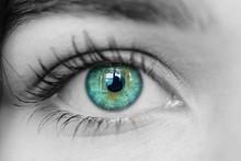 Eye Black And White Green