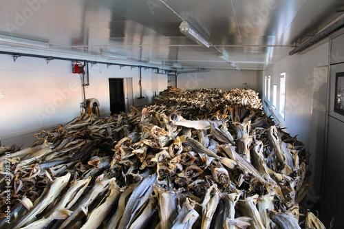 Foto auf Gartenposter Skandinavien Dried cod warehouse
