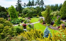 Queen Elizabeth Park In Vancou...