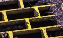 Yellow Rusty Iron Storm Drain With Dried Leaves And Twigs