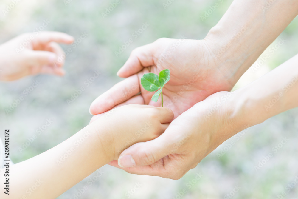 Fototapeta エコロジー 愛 誕生 平和