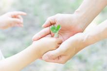 エコロジー 愛 誕生...