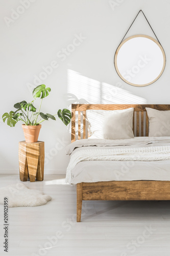 Fotobehang Sportwinkel Monstera plant on a tree trunk night stand and a round mirror on a white wall in a sunlit bedroom interior with wooden furniture