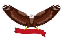 American Eagle Spread Wings Wi...