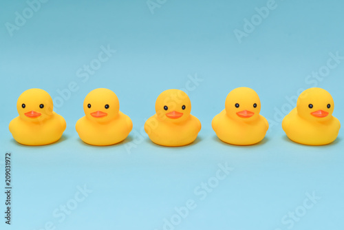 Obraz na plátně  Discipline concept, rubber ducky are lining up facing same direction