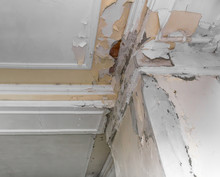 Ceiling And Walls Damage By Hu...