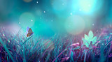 Fototapeta Fototapety z naturą - Butterfly in the grass on a meadow at night in the shining moonlight on nature in blue and purple tones, macro. Fabulous magical artistic image of a dream, copy space.