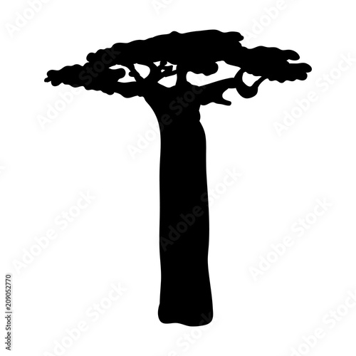 Canvas Print Silhouette baobab icon tree flora