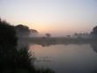 Fog on the lake. Dawn.