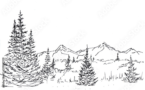 Fototapeta Landscape with a mountain chain and forest. In the foreground there are three tall firs. Hand-drawn linear illustration on paper. Sketch with ink on a white background. obraz