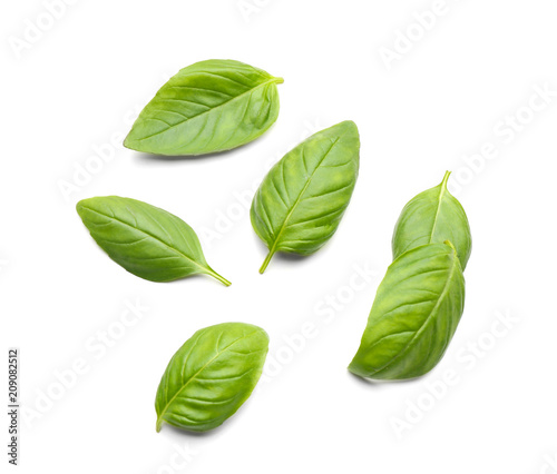 Fotografiet Fresh basil leaves on white background