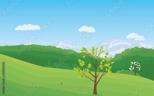 Foto op Canvas Lichtblauw Summer rural landscape.