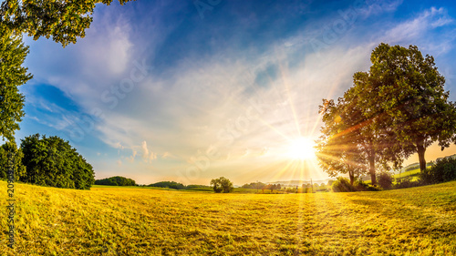 Staande foto Meloen Beautiful sunrise in the countryside at summer time