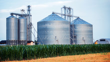 Silos For Storing Grain Harves...