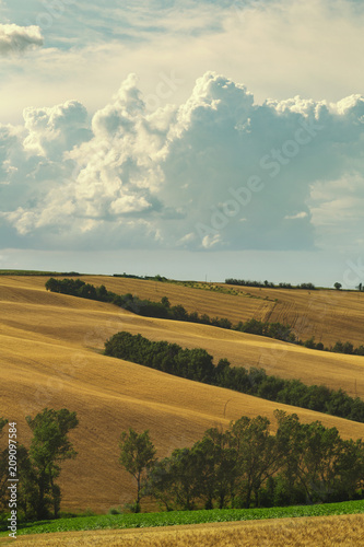 Foto op Canvas Beige Countryside landscape, cultivated fields and cloudy sky