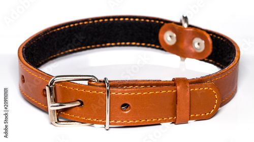 Leinwand Poster leather dog-collar isolated over the white background, side view
