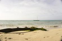 Beautiful Beach Of Costa Rica ...