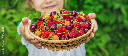 Different homemade summer berries in the hands of a child Fototapete
