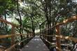 baixo angulo da ponte de madeira