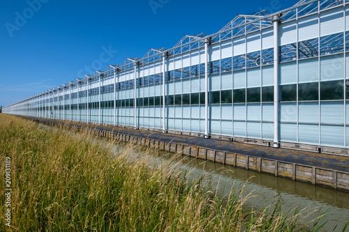 Fototapeten Natur Diminishing perspective view of a greenhouse in Westland, the Netherlands