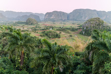 Morning View Of Vinales Valley With Mogote Mountains, Cuba